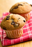 Tasty muffin with chocolate Royalty Free Stock Image