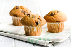 Tasty muffin with chocolate Stock Image