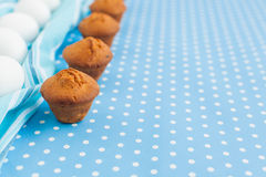 Tasty muffins Royalty Free Stock Photos