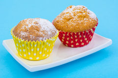 Tasty muffins on pastel background. Minimal food concept. Royalty Free Stock Photo