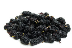 Tasty mulberry Royalty Free Stock Image