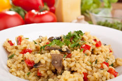 Tasty Mushroom Risotto Stock Images
