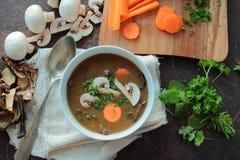 Tasty mushroom soup Stock Photography