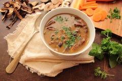 Tasty mushroom soup Royalty Free Stock Photos