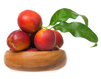 Tasty nectarines Royalty Free Stock Photos