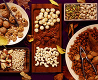 Tasty nuts Stock Photography