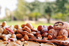 Tasty nuts on a wooden table in field front view Royalty Free Stock Photography