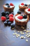Tasty oat tarts Stock Photos
