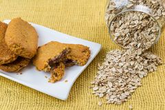 Tasty oatmeal cookies and oat flakes. Stock Photography