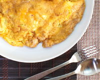 Tasty Omelet and rice stock image