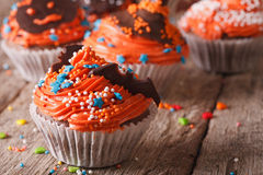 Tasty orange Halloween cupcakes with chocolate bat close-up. Stock Images