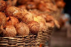 Tasty organic coconuts Royalty Free Stock Images