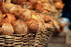 Tasty organic coconuts at local market in India Stock Image