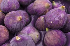 Tasty organic figs Royalty Free Stock Image