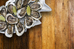 Tasty oysters on ice with lemon. Wood background Royalty Free Stock Image