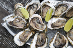 Tasty oysters on ice with lemon. Wood background Royalty Free Stock Photos