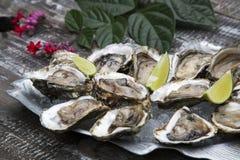 Tasty oysters on ice with lemon. Wood background Stock Photo
