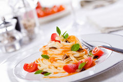 Tasty Pasta With Fresh Tomatoes royalty free stock photography