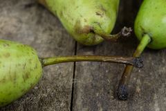 Tasty pears in a jute sack lying on a wooden kitchen table. Frui Stock Image