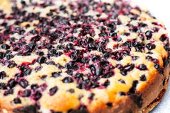 Tasty pie with blueberries on wooden table Royalty Free Stock Image
