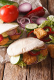 Tasty pita with chicken nuggets, cucumber, nappa cabbage, onion Stock Images