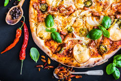 Tasty pizza Stock Photography