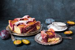 Free Tasty Plum Cake With Pieces Of Fruit And Powdered Sugar Stock Photos - 163182303