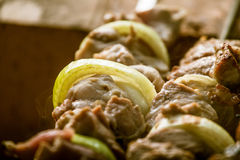 Tasty pork with onions ready for a picnic. Royalty Free Stock Images