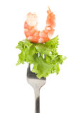 Tasty prawn and green salad Stock Photography