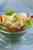 Tasty prawn salad. Shrimp appetizer with fresh salad Royalty Free Stock Photo