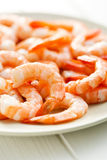 Tasty prawns on plate Stock Image