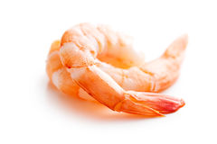 Tasty prawns Royalty Free Stock Photos