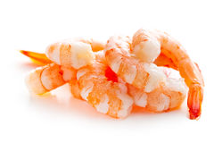 Tasty prawns Stock Photos