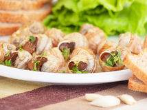 Tasty prepared escargot Royalty Free Stock Photos