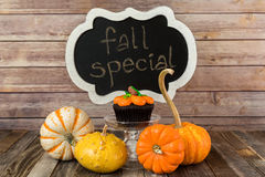 Tasty pumpkin muffin with chalkboard sign and decorative gourds Royalty Free Stock Image