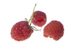 Tasty raspberries Royalty Free Stock Photo
