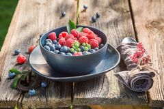 Tasty raspberries and blueberries on old wooden rustic table. Session in outside Royalty Free Stock Photography