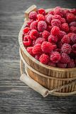 Tasty raspberries in bucket on vintage wooden board.  Royalty Free Stock Image