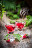 Tasty raspberries liqueur made of fruits and alcohol in forest Royalty Free Stock Image
