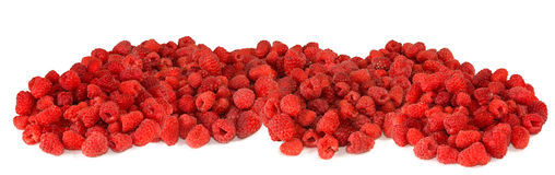 A tasty raspberry closeup Stock Image