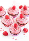 Tasty raspberry cupcakes Royalty Free Stock Photos