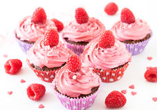Tasty raspberry cupcakes Royalty Free Stock Images