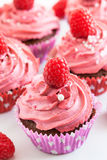 Tasty raspberry cupcakes Royalty Free Stock Photo
