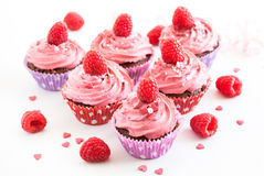 Tasty raspberry cupcakes Stock Images