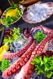 Raw octopus on the ice. A tasty raw octopus on the ice Stock Image