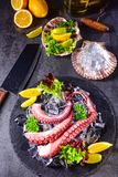 Raw octopus on the ice. A tasty raw octopus on the ice Stock Photography