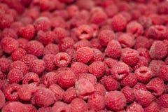 Tasty red raspberries. rustic style. Fresh raspberries. vegetarian concept.  rustic style Royalty Free Stock Photo