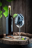 Tasty red wine and fresh grapes on barrel Stock Images