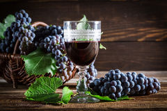 Tasty red wine with grapes Stock Images