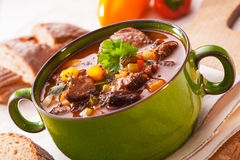 Tasty rich meaty stew Royalty Free Stock Photos